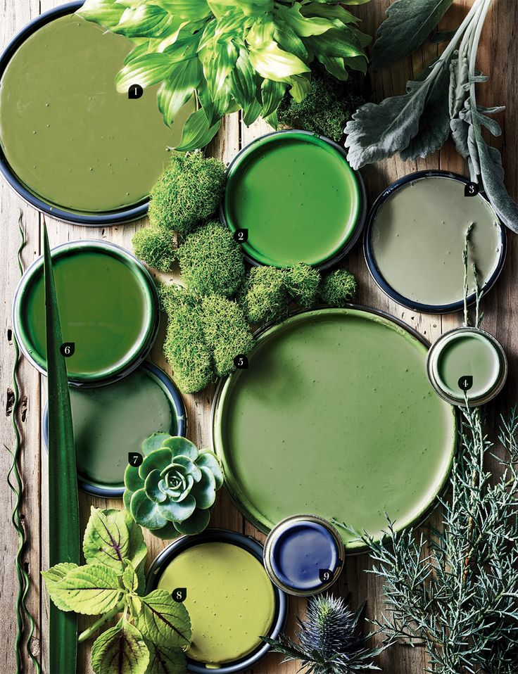 Bring the Colors of Nature Indoors with Paint - Flower Magazine 1. Benjamin Moore, Olive Moss 2147-20. 2. Carleton Varney for Fine Paints of Europe, Palm Beach Green. 3. Benjamin Moore, Louisburg Green HC-113. 4. Farrow & Ball, Breakfast Room Green No. 81. 5. Farrow & Ball, Yeabridge Green No. 287. 6. Fine Paints of Europe, WC-60. 7. Benjamin Moore, Cedar Path 454. 8. Barry Dixon for C2 Paint, Viburnum BD 74. 9. Farrow & Ball, Pitch Blue No. 220
