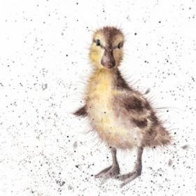 MP019 - Just Hatched | Wrendale Designs