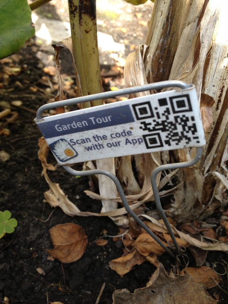 QR Codes in the Garden - Idea for High School Computer Science classes: have students create a app-based scavenger hunt based on the garden.
