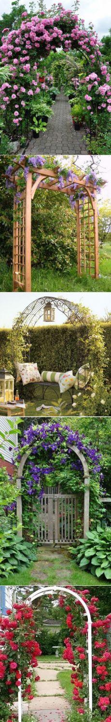Садовые арки из цветов