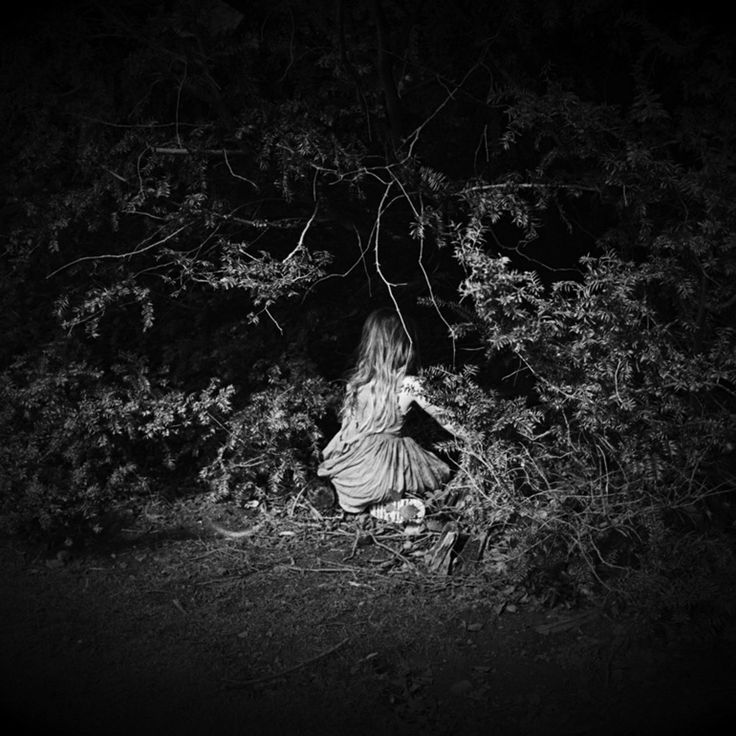 "DEBORAH PARKIN PHOTOGRAPH ""HIDING NOT SEEKING"""