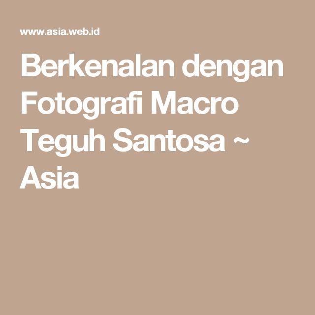 Berkenalan dengan Fotografi Macro Teguh Santosa ~ Asia