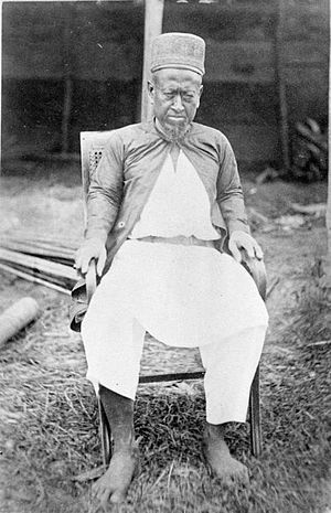 Sultan of Jambi _1877-1879 (Wikipedia Indonesia)