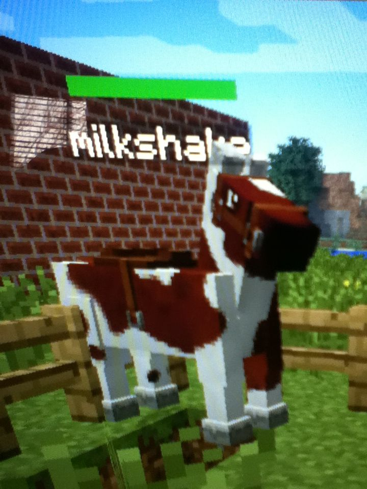 Brown And White Minecraft Horse