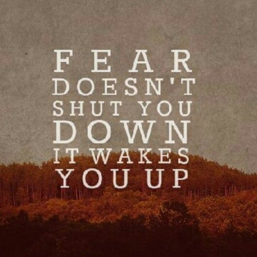 ... quotes fear quotes movie qoutes wise quotes quotable quotes series
