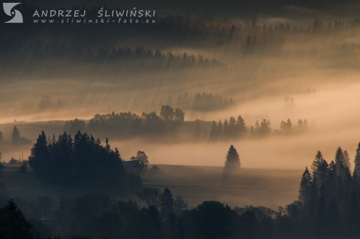 Morning in the Beskidy Mountains.