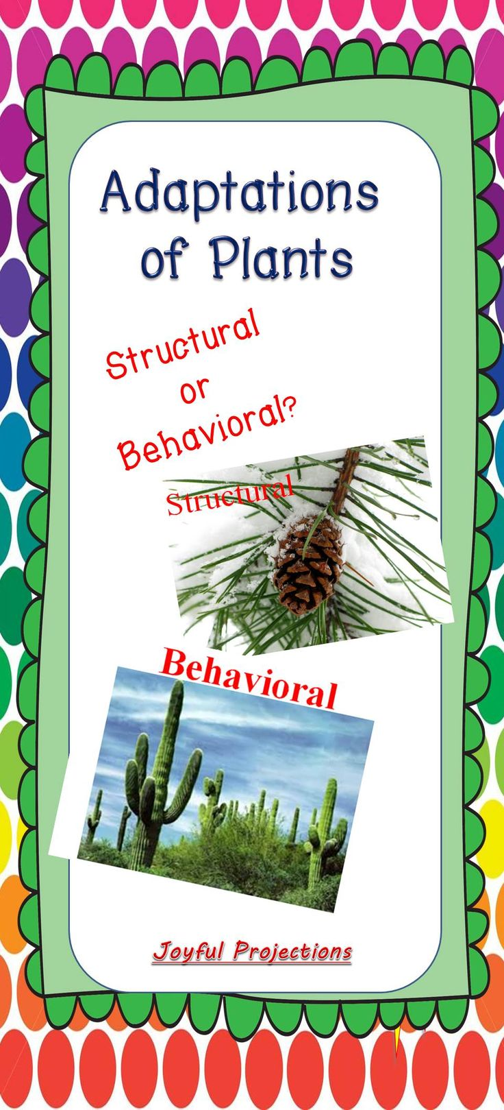 Just like animals, plants have structural and behavioral adaptations. Students can take notes on the definitions of each, and then list and diagram each photo under the correct category of its adaptation.