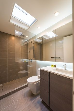 Contemporary 3/4 Bathroom with European Cabinets, Skylight, Flush, Dulles glass and mirror custom frameless shower screen