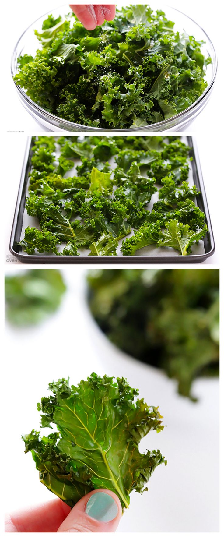 Sea Salt and Vinegar Kale Chips -- a healthier and delicious alternative to the potato chips version! | gimmesomeoven.com