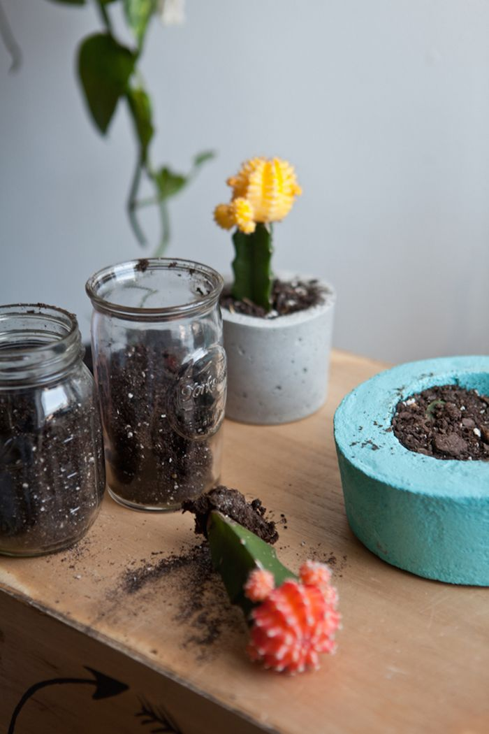 http://www.thedecorbar.com/2015/11/diy-cement-planters/