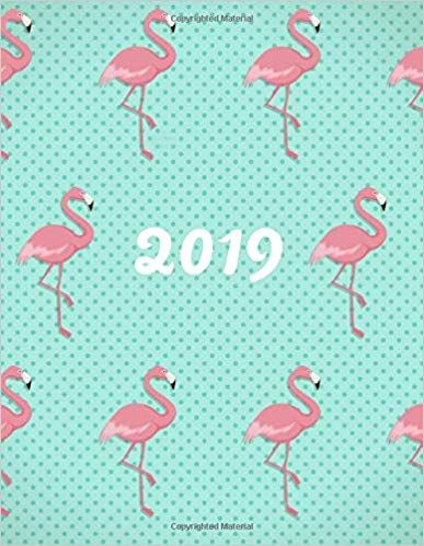 8d2f1406455 amazon - 2019 Weekly Planner  Turquoise Flamingo Dotty