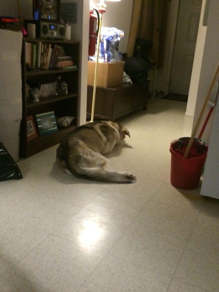 Watching the door