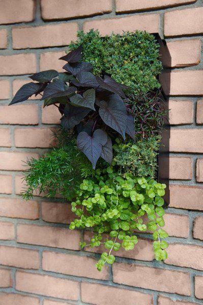 Best 25 Gardening Supplies Ideas On Pinterest Small