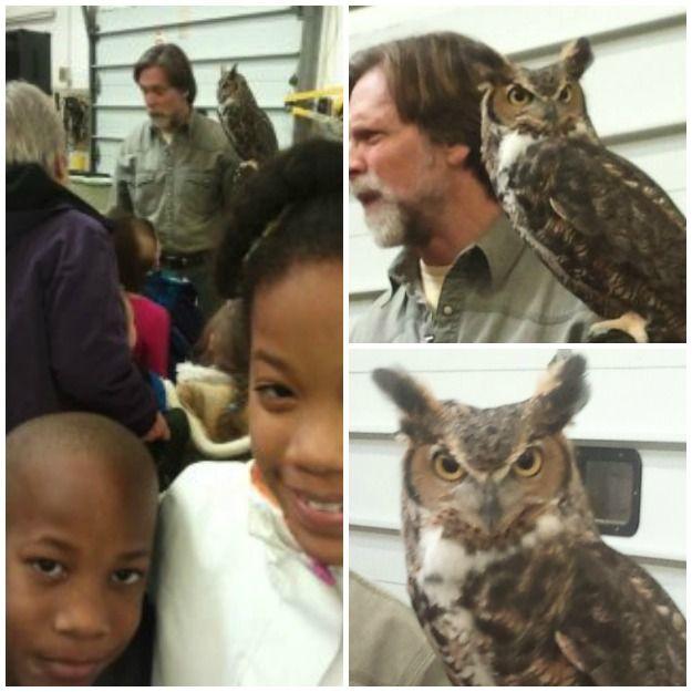 22 best owl moon jan images on pinterest owls owl and owl moon owl moon goodnight moon preschool 1st grade activities fandeluxe Choice Image