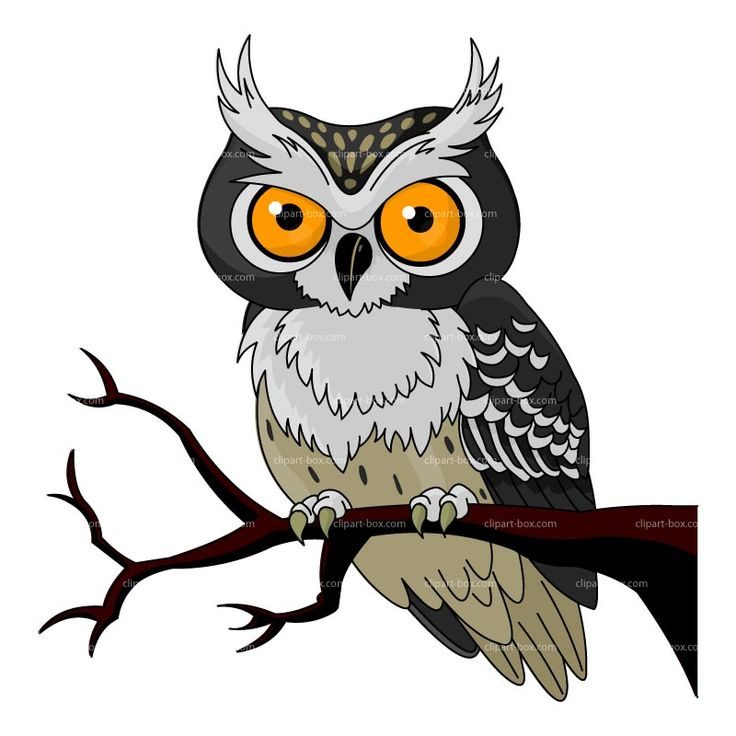 CLIPART OWL CARTOON | Royalty free vector design
