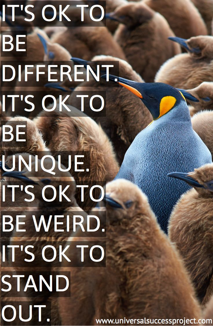 It's ok to be different. It's ok to be unique. It's ok to be weird. It's ok to stand out. These are all of the qualities of great entrepreneurs. You have to know, understand and embrace what sets you apart from the rest so you can harness the power. #unique #different #focus #determination #mindset #ambition #success #hustle #entrepreneur #quote #love #work #amazing #motivation #life #universalsuccessproject