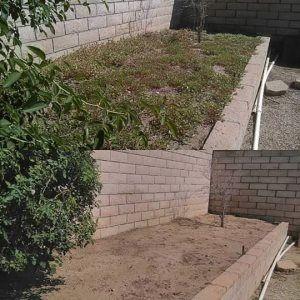 Pro #7332512 | Margarita lawn care & tree service | Fontana, CA 92336