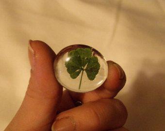 five leaf clover, 5 leaf clover, green, good luck keepsake, keepsake, four leaf clover, 4 leaf clover, gift