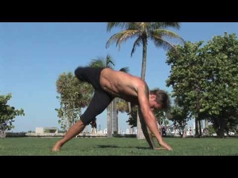Check this out - this is crazy cool...It's called the Animal Flow Workout and I've never seen anything like what these guys do. I don't think I'll ever be in this good a shape!