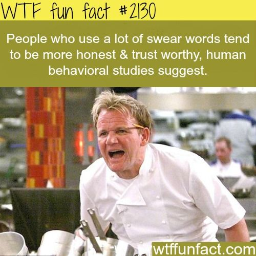 Honest people facts -WTF fun facts