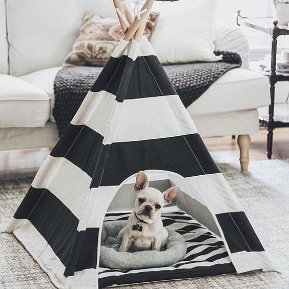 17 Best Ideas About Indoor Dog Houses On Pinterest