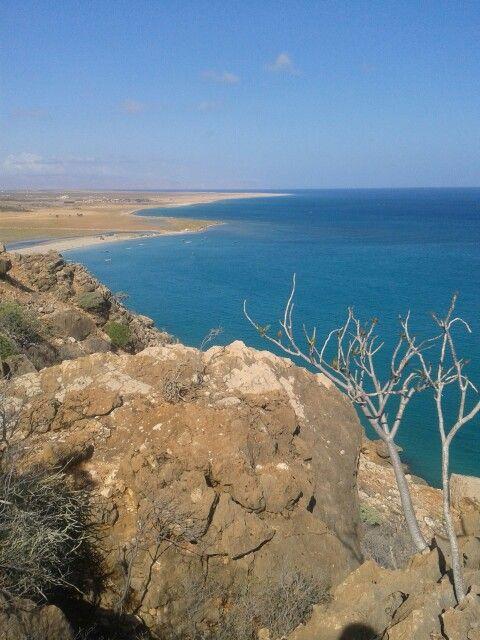 beaches in Socotra make my heart happy.