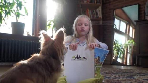 Toronto Humane Society Children S Reading Program Goes To The Dogs Childrens Reading Humane Society Shelter Dogs