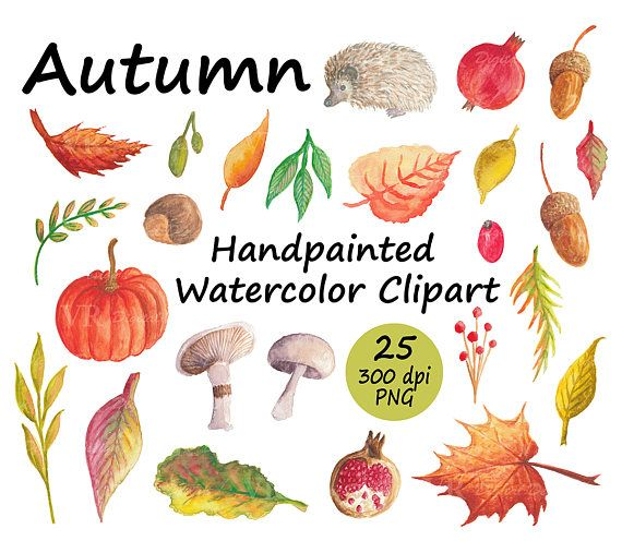 Autumn Handpainted Watercolor Clipart with Pumpkin