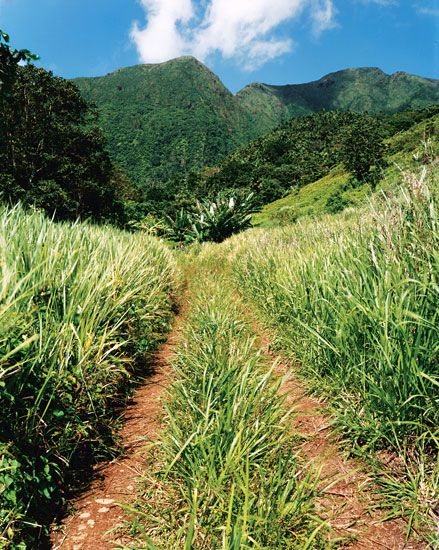 The Sweet Spot: Nevis and St. Kitts - Condé Nast Traveler