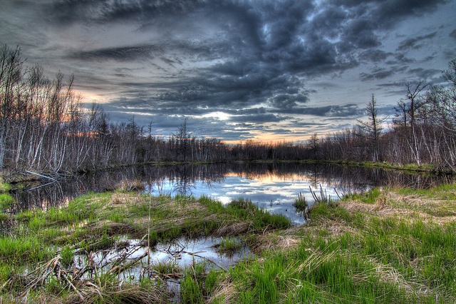 Kouchibouguac National Park (11 National Parks in Canada You Probably Haven't Heard Of)