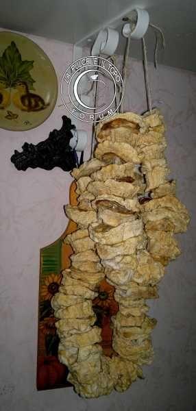 Zucchine disidratate http://www.lapulceeiltopo.it/forum/ricette-sottovetro-conserve-salse-confetture/2133-zucchine-disidratate,-conserve-per-l-inverno#2960
