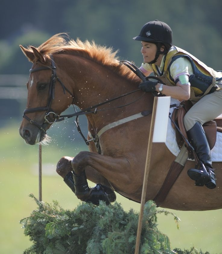 Practice Maintaining Impulsion on Course with a Figure-8 ...