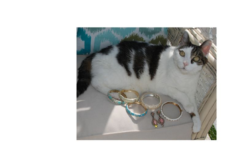 You can never have too many Sequin bracelets!  So says, Princess Sadie of Palm Beach.