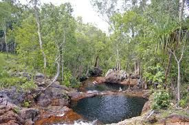 This is my favourite swimming spot in Litchfield National Park outside of Darwin. Buley Rockhole is a ctually a series of pools each cascading into the next, surrounded by natural bush. You can quite often see wildlife like birds and large monitors sunning themselves nearby. Streams of bubbles float up from the bottom of the pools, it's like sitting in a glass of champagne. I love it!