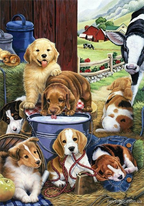 """Puppy Hayday"" -- Jenny Newland"
