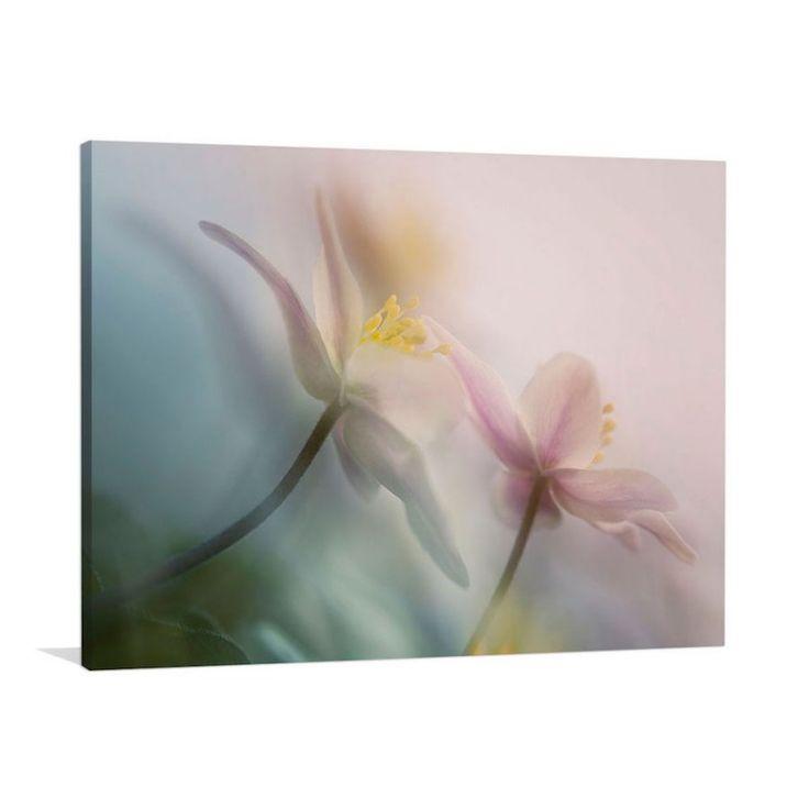 Gentle | Canvas or Framed Print by Artist Anton van Dongen | The Block Shop