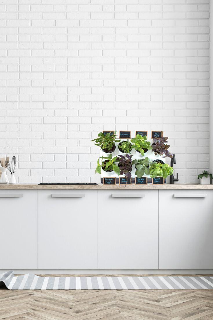 Pixel Kitchen Countertop Garden In 2020 Herb Garden In 640 x 480