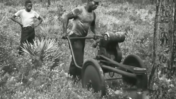 """Logging in Georgia: """"Men of the Forest"""" 1952 United States Information Service https://www.youtube.com/watch?v=z8HhWVzzcVc #logging #trees #forestry"""