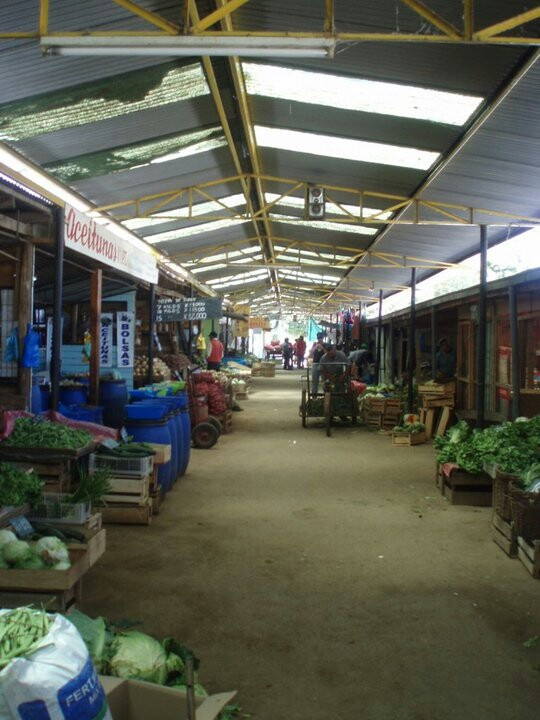 La feria..farmer's market. .Linares