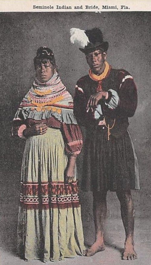 the struggles and triumphs of the seminole indians in history The seminole natives: history & who spoke the mikasuki language (seminole indians 290) by about the year 1775, they began to be known by the name seminole also joining the migrants were indian and negro slaves, who fled from the power struggles between the americans and the.