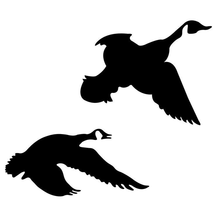 flying silhouette duck stencil stencils bird pumpkin geese goose clip outline vinyl halloween clipart silhouettes patterns drawings cliparts canada vector
