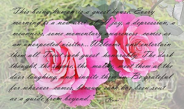 Rumi quote and roses