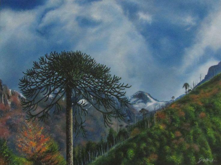 Araucaria, Oleo sobre tela, autor Jorge Meezs
