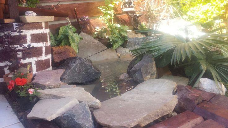 meu laguinho com fonte.
