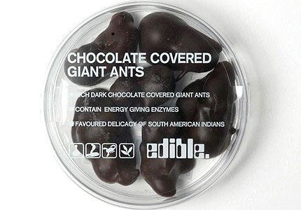 Chocolate covered ants