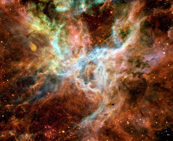 Center of the Tarantula Nebula, in near infrared, contains the most massive stars ever found, in a center concentration known as R136. Several stars are between 100-200 solar masses and millions of times more luminous than our Sun. The largest (R136a1) is thought to be 265-315 solar masses. It is thought that the number of stars in the super star cluster in the Tarantula Nebula has the capability of becoming a globular cluster in the future, the largest star clusters.