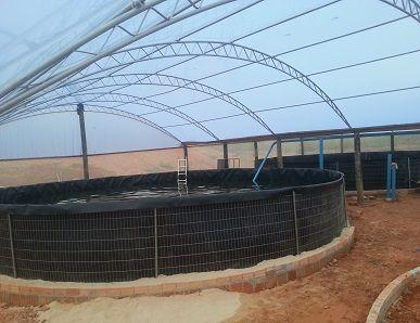 tanque de piscicultura Sports Freedom