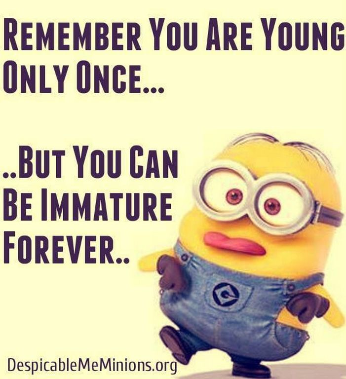Thursday Minions Funny images of the hour (09:03:26 PM, Thursday 19, November 2015 PST) – 10 pics