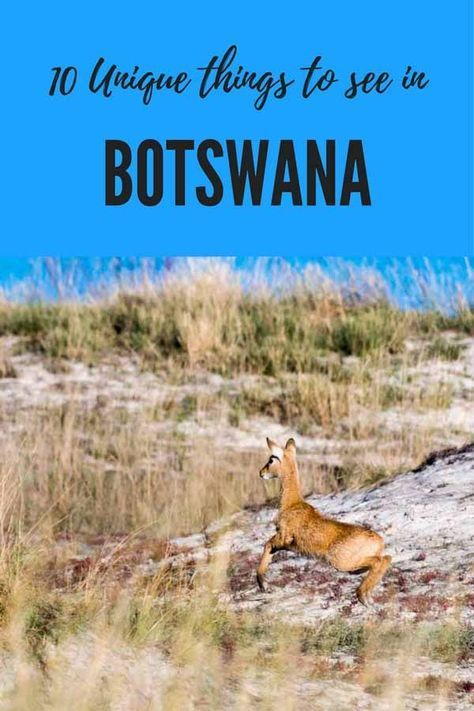 Unique things to do in Botswana including Okavango Delta, Gaborone, Chobe national park and our 1 week Botswana overland itinerary! #Botswana #visitBotswana #Africa