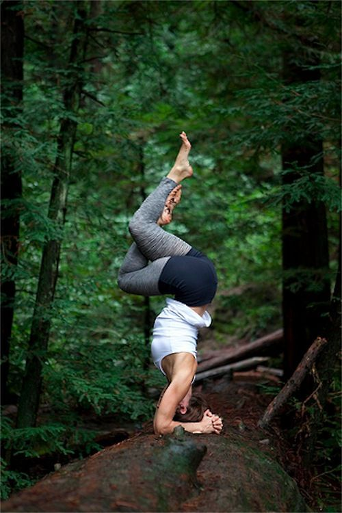 Do yoga in the jungle!